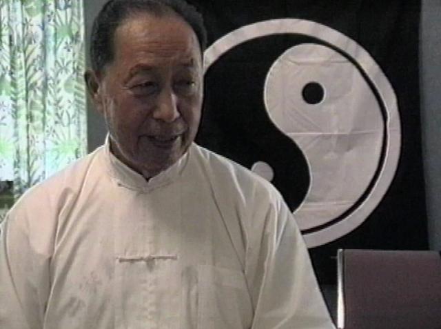 Wang Yen-nien 1996