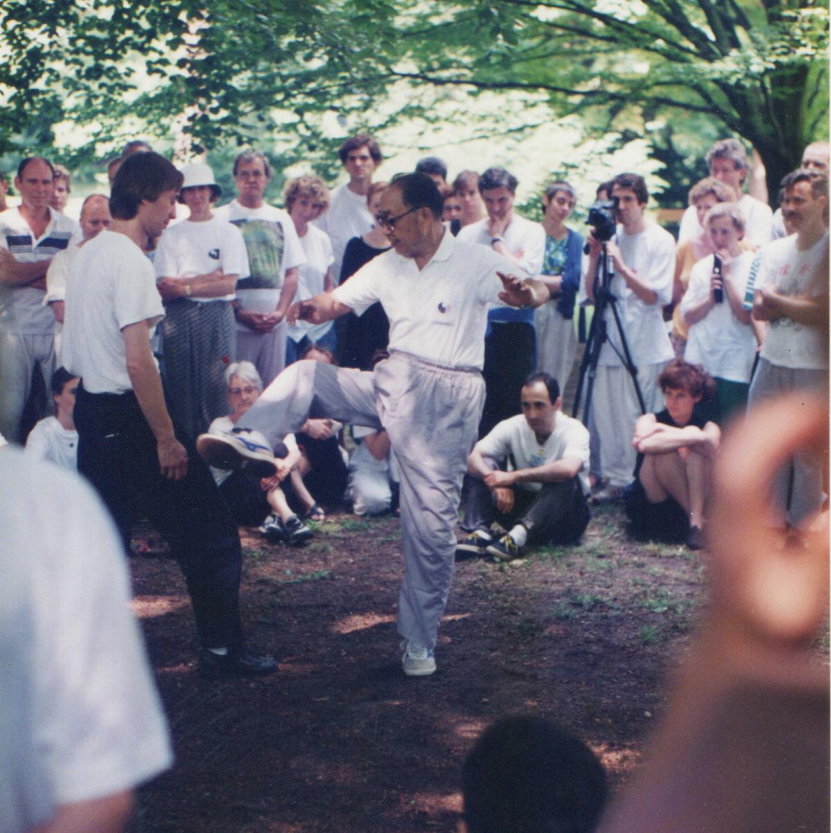1995 strausbourgh WYN 3